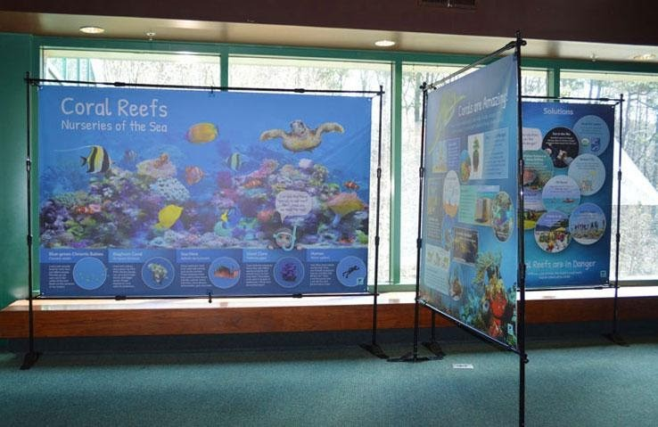 Coral Reefs Banner